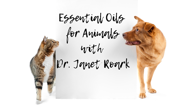 Essential Oils for Animals Workshop
